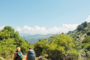 Along the Madonie trails - Full day hike