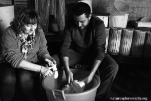 Caciocavallo cheese making
