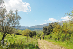Hiking in the Sicilian country
