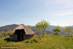 Pagliaio - Traditional hut