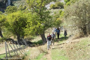 Trekking di 1 giorno disponibile da primavera a autunno - Full-day hike available from spring to autumn