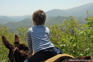Una passeggiata ideale con i bambini - An ideal hike with kids